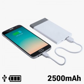 Power Bank with Removable USB 2500 mAh 8 GB