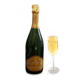 Champagne Boisé Dangin et fils Millésime 75cl